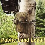 trail camera mount