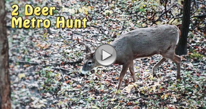 october bow hunt