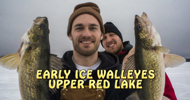 Red Lake Walleye