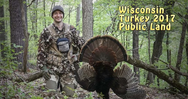 turkey hunting 2017