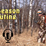 in season scouting